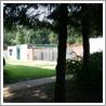 Dierenasiel Hof van Ede Stichting Dierenzorg Renkum Activiteiten