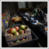 Samenwerking voedselbank Dierenasiel Hof van Ede Stichting Dierenzorg Renkum Activiteiten